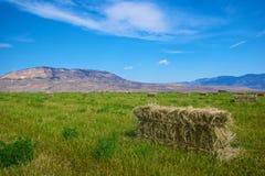 O feno da terra é recolhido Fotos de Stock Royalty Free