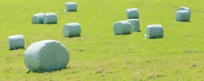 Pacotes da ensilagem envolvidos no plástico branco no campo verde em s Fotografia de Stock
