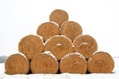 Pacotes da forragem da palha no inverno Fotografia de Stock