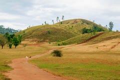 Pacotes da montanha em Ranong do sul de Tailândia Imagens de Stock Royalty Free