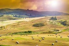 Pacotes da palha após a colheita em Sicília Imagens de Stock Royalty Free