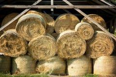 Pacotes da palha do armazenamento da palha Imagem de Stock