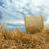 Pacotes da palha em nuvens de tempestade da terra Fotografia de Stock