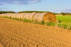 Pacotes da palha em um prado verde no por do sol Imagens de Stock Royalty Free
