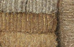 Pacotes da palha empilhados Imagens de Stock