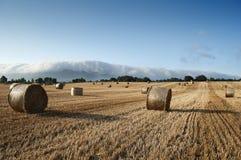 Pacotes da palha nos campos de trigo Fotografia de Stock Royalty Free