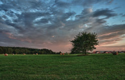 Pacotes de feno e árvore só em um prado contra o céu bonito com as nuvens no por do sol Imagem de Stock