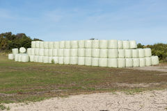 Pacotes de feno empilhados envolvidos no plástico Imagens de Stock