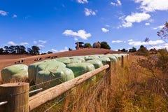 Campo de Austrália fotografia de stock