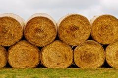 Pacotes de feno no campo após a colheita Imagem de Stock Royalty Free