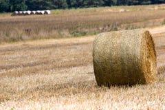 Pacotes de feno no campo após a colheita, Polônia Fotos de Stock Royalty Free