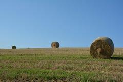 Pacotes de feno no campo colhido Imagem de Stock Royalty Free