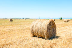 Pacotes de feno no campo Portugal Fotos de Stock