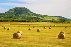 Pacotes de feno no pé de montanhas de Badacsony em Hungria Fotos de Stock Royalty Free