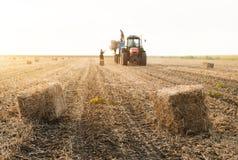 Pacotes de feno novos e fortes do lance do fazendeiro em um reboque de trator noun - b Imagem de Stock