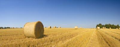 Pacotes de feno, paisagem rural idílico Fotografia de Stock Royalty Free