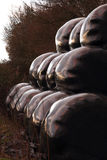 Pacotes de Sileage empilhados arrumadamente na luz incomum Fotografia de Stock