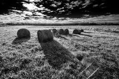 Pacotes do feno em um campo - preto e branco Fotografia de Stock Royalty Free