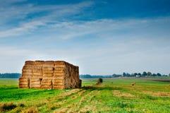 Pacotes do milho no campo do outono Imagem de Stock Royalty Free