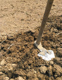 Pacul, traditionelles Landwirtschaftswerkzeug Lizenzfreie Stockfotos