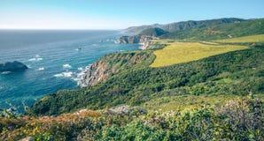 Pacyficznego oceanu dużego sura coatal plaże i krajobrazy zdjęcie stock