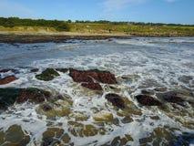 Pacyficznego oceanu linia brzegowa, Bobowa Dudniąca stan plaża Zdjęcie Royalty Free