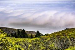 Pacyficznego oceanu linia brzegowa widoczna pod mgłą obraz stock