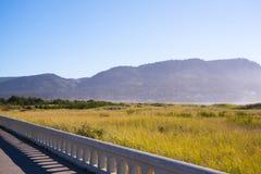 Pacyficznego oceanu północnego zachodu Oregon brzegowy kształtować teren z trawą i obraz stock