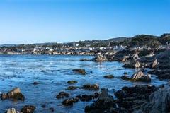 Pacyficzny gaju wybrzeże, Monterey, Kalifornia Zdjęcia Stock