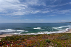 Pacyficzny ocean - Monterey, Kalifornia, usa obrazy stock