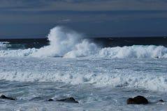 Pacyficzny ocean w Monterey zatoce, CA Zdjęcie Royalty Free