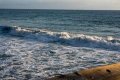 Pacyficzny ocean w Wenecja plaży obrazy stock