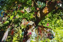 Pacyfikator, atrapa, dójka lub koiciel w drzewie, fotografia stock