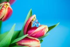 Pacyfikator w tulipanowym, błękitnym tle, obraz royalty free