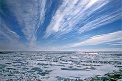 paczka lodowa Fotografia Stock