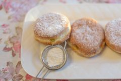 Paczki pastries for Fat Tuesday. Delicious Paczki pastries for Fat Tuesday on white plate Stock Images