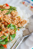 Pad Ka prao with pork Stock Photography