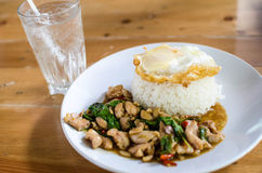Pad kaprao chicken. Eat kaprao chicken thai land food Stock Images