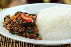 Pad Krapao Moo, spicy stir-fried pork with Thai Holy basil and c Royalty Free Stock Image