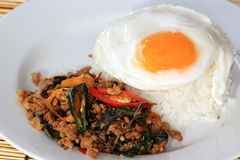 Pad Krapao Moo, spicy stir-fried pork with Thai Holy basil and c Royalty Free Stock Photos