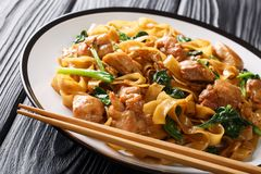 Free Pad See Ew Thai Noodles With Chicken, Chinese Broccoli And Egg Close-up On A Plate. Horizontal Stock Image - 161288781