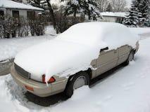padał śnieg Zdjęcia Stock