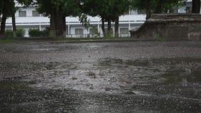 Pada, kałuża na bruku w lato parku zbiory