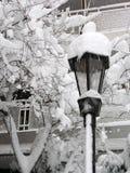 pada śnieg Fotografia Royalty Free