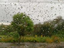 Pada przy okno widok na zewnątrz okno fotografia royalty free