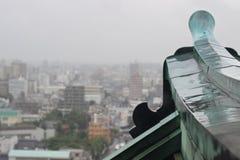 Padający w Kyoto, Japonia fotografia royalty free