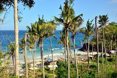 Padangbai hidden beach and coconut trees in Bali Royalty Free Stock Images