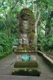 Padangtegal apaskog, berömt touristic ställe i Ubud, Bali Indonesien Royaltyfri Bild