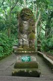 Padangtegal Monkey Forest, famous touristic place in Ubud, Bali Indonesia Royalty Free Stock Image