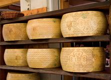 padano för italienare för ostdop-grana Royaltyfri Bild